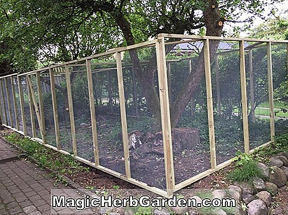 Greenhouse Havearbejde Tips