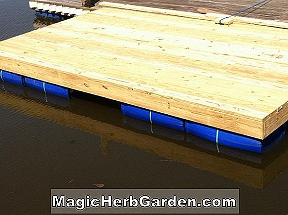 Dockside Decking, wie man baut