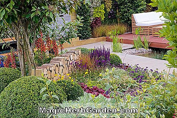 Tips: Natural Garden artikler