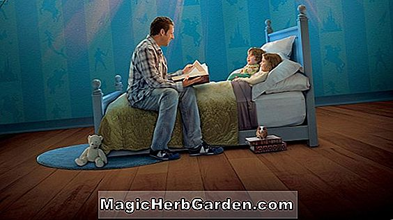 Bedtime Stories Ringtone - Full Length -